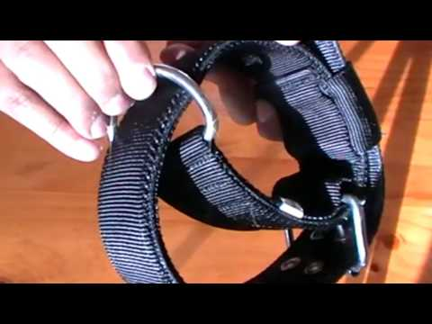 heavy duty dog collars for big dogs - wide leather dog collar for strong pitbull dogs