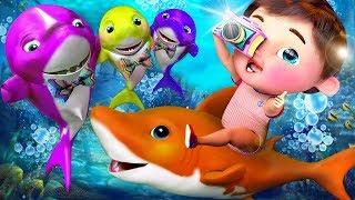 Baby Shark , Five Little Shark ,  The Wheels on the Bus , Johny Johny Yes Papa , ABC Song