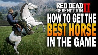 How To Get THE BEST Horse In The Game! The Rare Arabian! Red Dead Redemption 2 RDR2