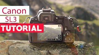 02. Canon SL3 Tutorial - Beginners Guide