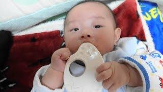 赤ちゃん・はじめての歯がため お米の歯がため - 日台ハーフ赤ちゃん・ハルキの成長記録