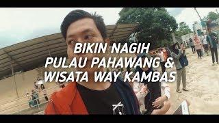 Ternyata ini yang BIKIN NAGIH di Taman Wisata Way Kambas dan Pulau Pahawang Lampung