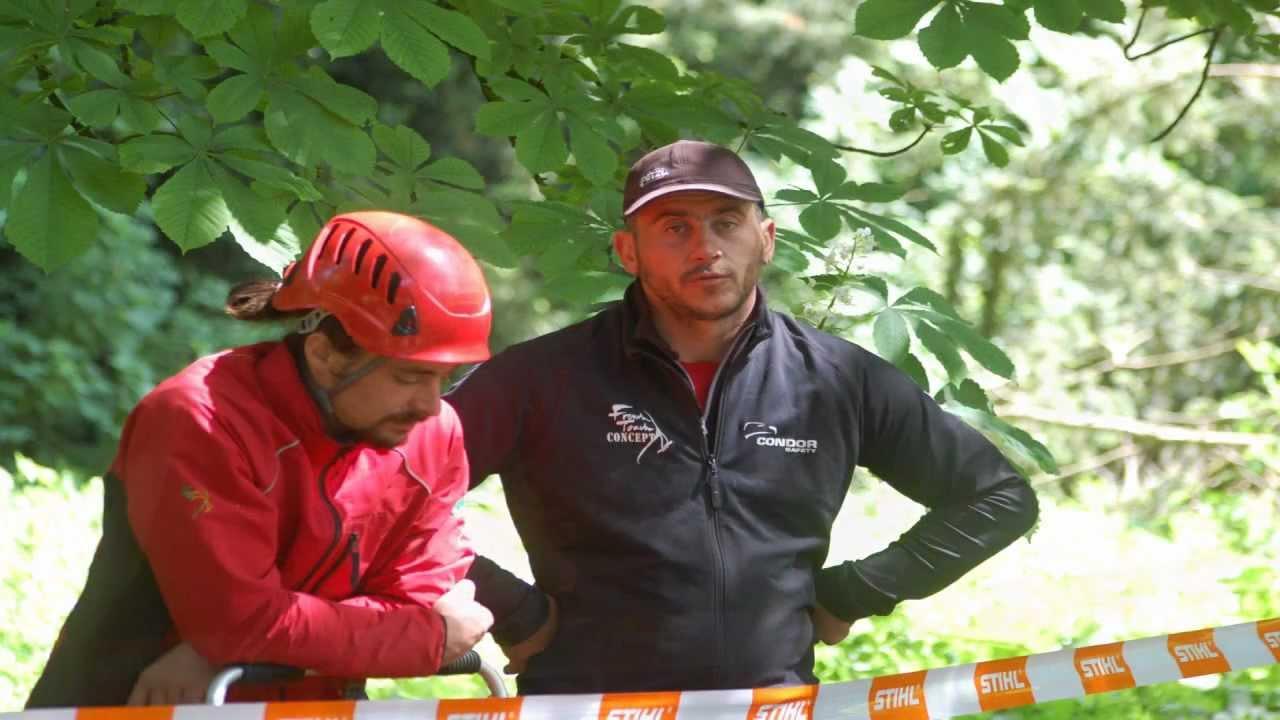 Rencontre regionale d'arboriculture