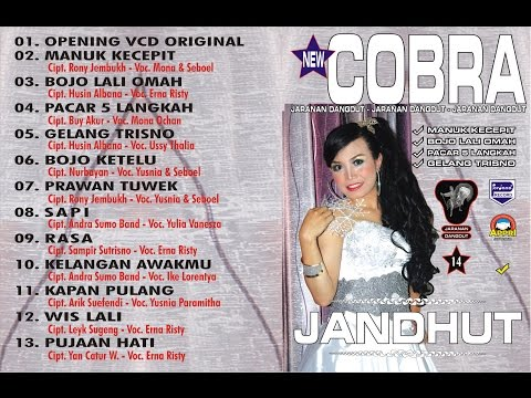New Cobra - Bojo Lali Omah - Erna Risty  [ Official ]