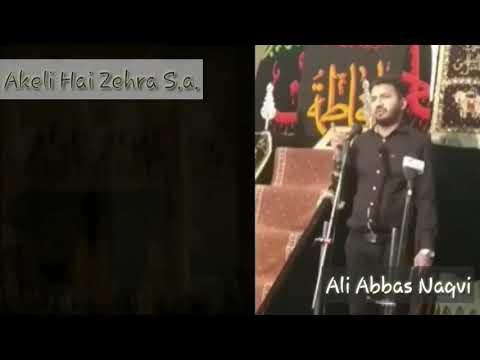 Akeli Hai Zehra s.a | Ayyam e Fatima s.a 2018 | Reciter Ali Abbas Naqvi| Shah e Marda Jor Bagh Delhi