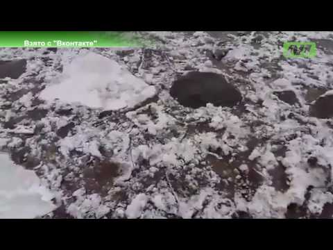 Уровень воды в Оби в районе Сургута вырос