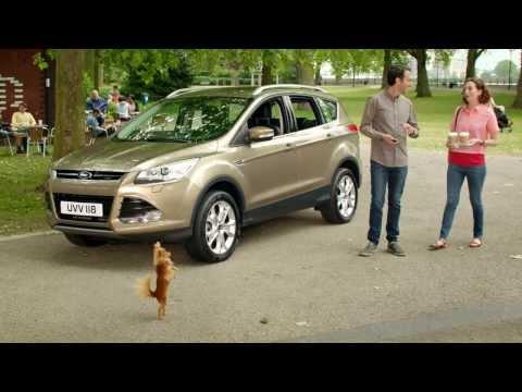 Anuncio nuevo Ford Kuga 2014 Perro