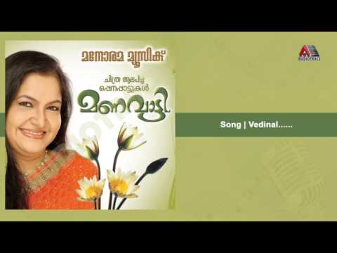 Vedinal - Manavatti video