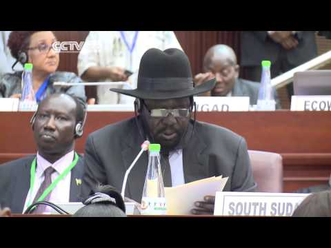 Security Discussions At The Africa Union Summit