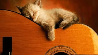 Download Lagu Ultimate Relaxing Guitar Music Collection | #playlist Gratis STAFABAND