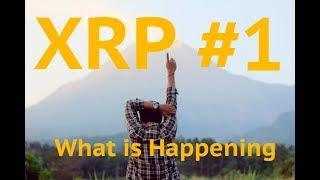 Bakkt CEO Crypto Revolution is Beginning - XRP Bitcoin Crypto Kungfu