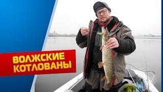 платники рыбалка нижний новгород