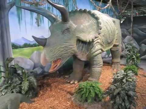 The Dinosaur kid goes to the Omaha Children s Museum