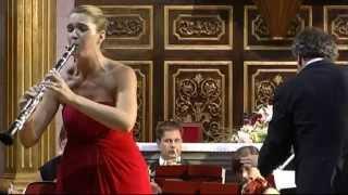 Ennio Morricone - Gabriel´s Oboe (clarinet version)