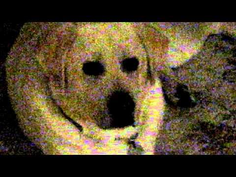 Late Night Sarah McLachlan ASPCA Commercial Parody with Deuce...