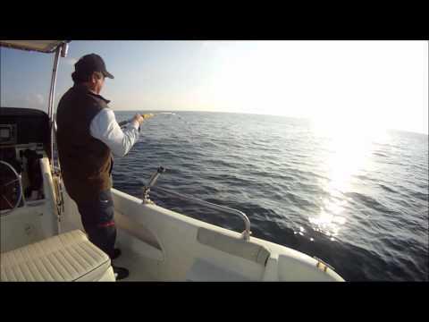 pesca a inchiku