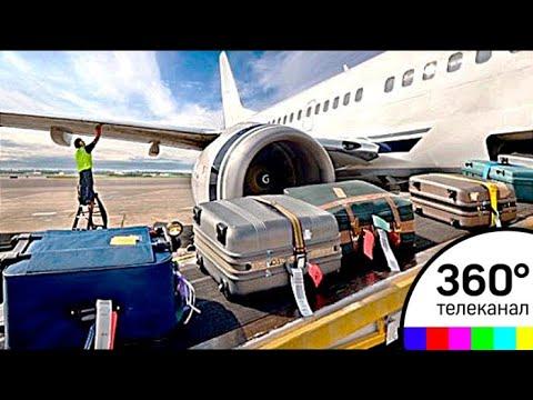 Багаж в самолете размеры и вес 2018