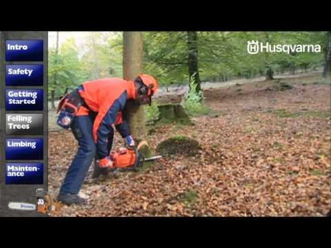 How To Work With Chainsaws - Felling Trees video