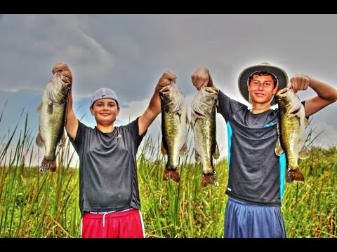 Top Water Everglades Bass Fishing with Casey  Gauge and Capt  Shane