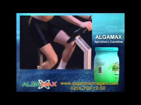 Algamax spirulina fiyatı