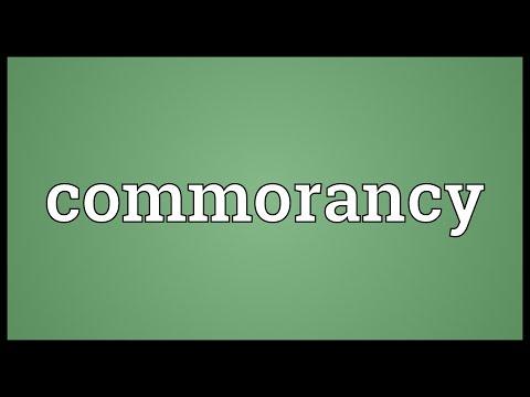 Header of commorancy