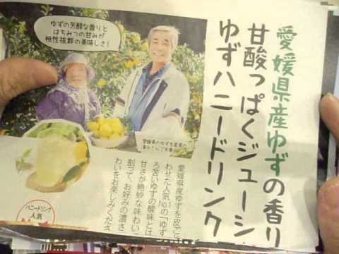 GEDC1983 2015.03.13 nikkei news paper