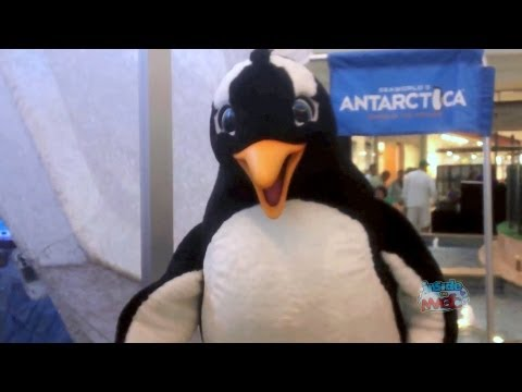meet the spartans penguin voice message