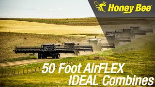 50' Honey Bee AirFLEX on 6 IDEAL combines!