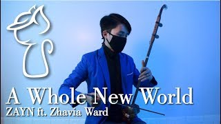 ZAYN ft. Zhavia Ward - A Whole New World | Chinese Violin /二胡(Erhu) cover by Erwin G Walker