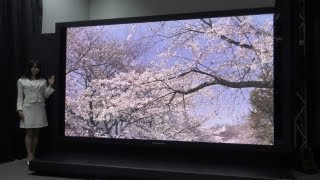145-inch Ultra High Definition plasma display #DigInfo