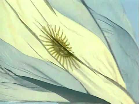 HIMNO NACIONAL ARGENTINO. Carlos Antonio Fabre