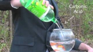 """""""Climate Change Movies Trailer"""" UMass Lowell Student Film for Climate Change Class (2011)"""