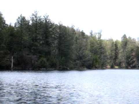 Cowhorn Pond, Five Ponds Wilderness, Adirondack Forest Preserve