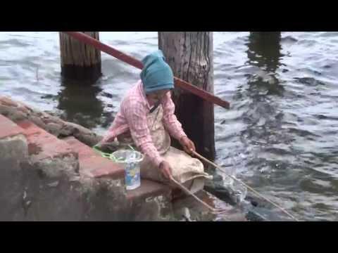 สาวพม่าตกปลาแปลกมาก amazing myanmar Fishing stile