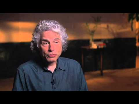 Bill Gates with Steven Pinker: Is Violence a Guy Thing?
