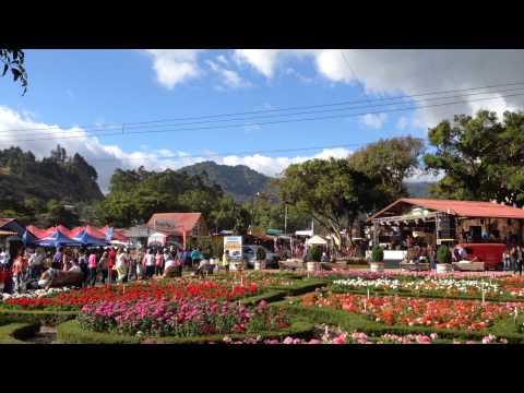 Feria del las Flores y el Cafe en Boquete 2014. Prestige Panama Realty. 6981.5000