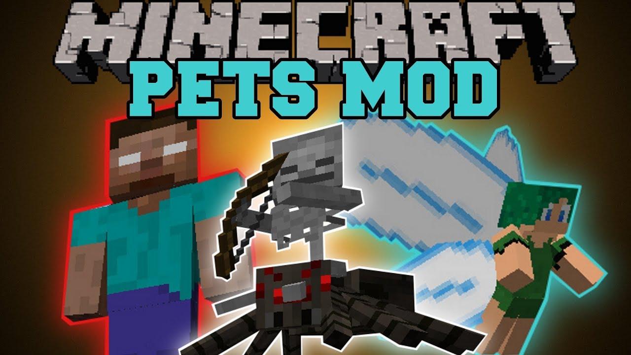 Minecraft Pets Mod Summon