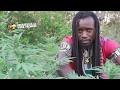 Zamunda - Get High [Official Video 2017]