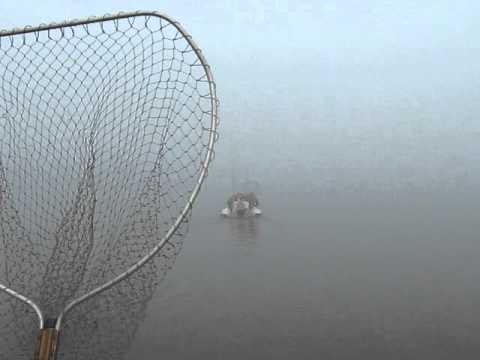 ловля на креветку на фидер