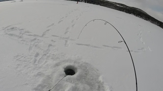 Ice Fishing Surprise... Schroon Lake Day 3