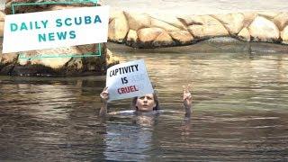 Daily Scuba News - Protesters Shut Down Seaworld