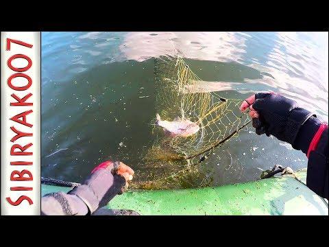 УЖАС!!! Везде СЕТИ!!! Рыбалка испорчена. Когда браконьеры наедятся!?