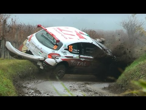 Best of Shakedown + SP1 Crash, Action, Waldviertel Rallye 2016