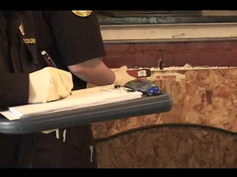 processing crime scene essay