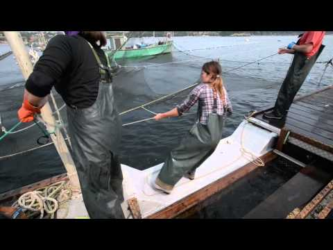 Lummi Reefnet Fishing