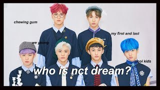 an (un)helpful guide to NCT Dream #1yearwithNCTDream