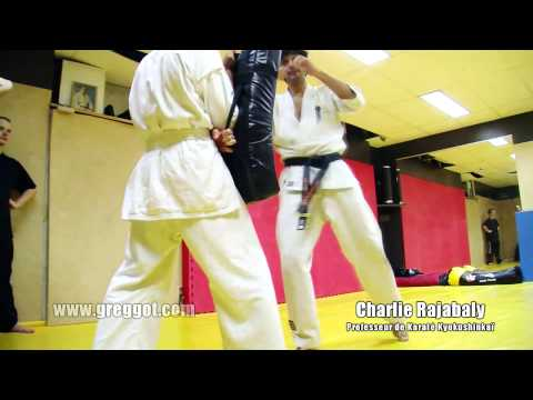 Club Karate Kyokushinkai Paris Vanves| Cours video 01 Image 1