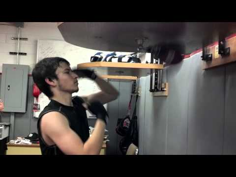 Ariel Guevara Speed Bag Training Image 1
