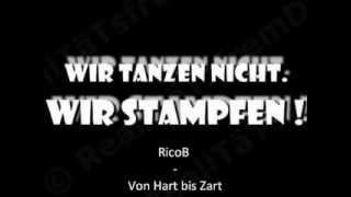 RicoB -  Von Hart Bis Zart