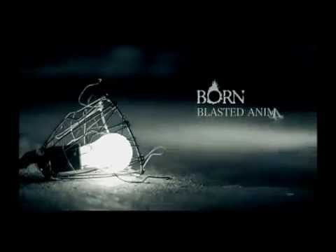 BORN - BLASTED ANIMALS PV